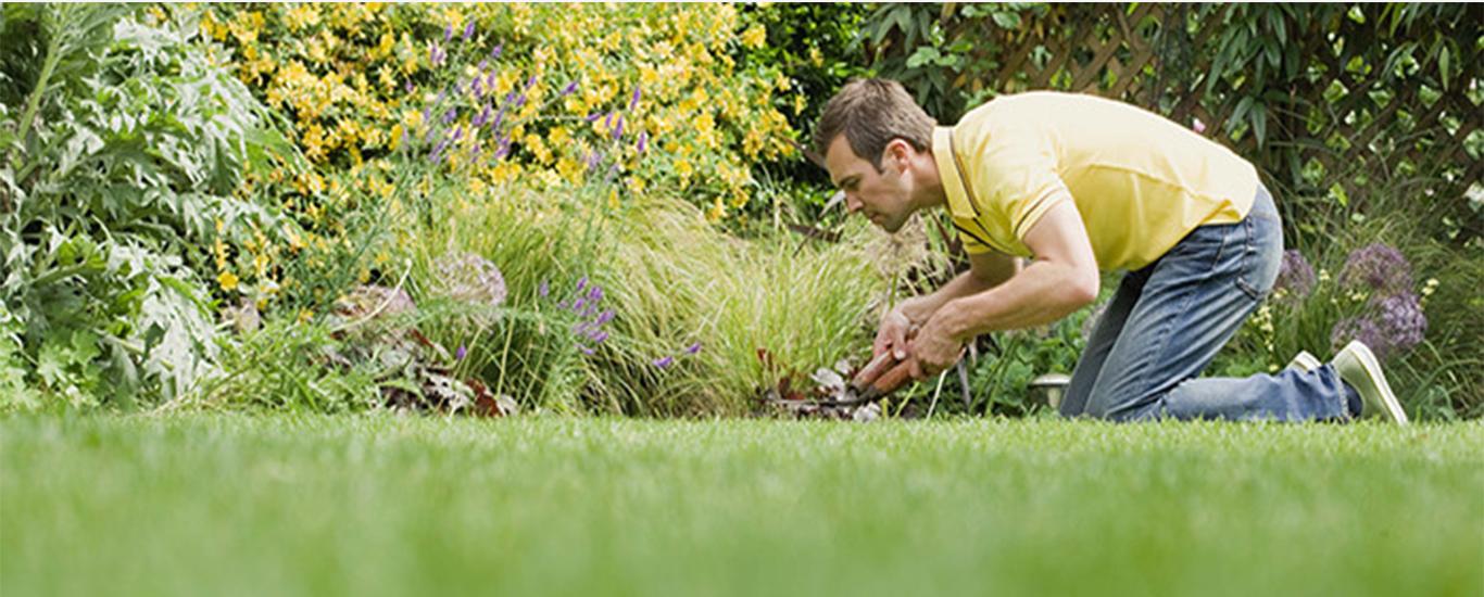 495-gardening-700x400